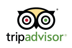 TripAdvisor's Latest Redesign Puts the Spotlight on Tours and Activities. What Does that Mean for Tour Operators?
